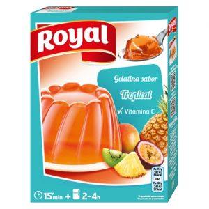 Gelatina Royal – Frutti Tropicali